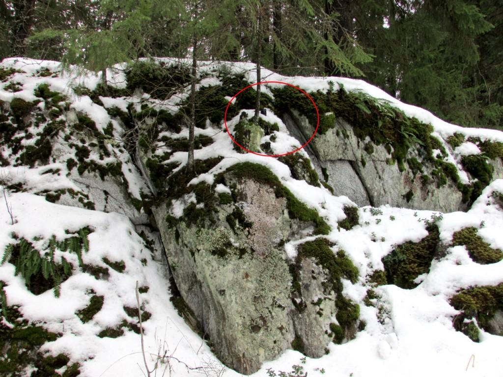 Kuva 6 - Tämän kätkön terrain voisi olla 2.5 tai 3 riippuen hieman siitä kuinka hankala kätkö on saavuttaa.