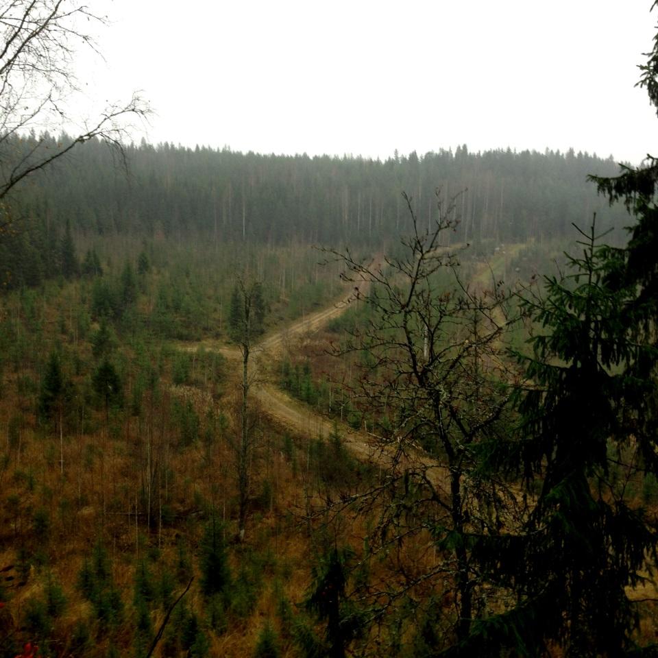 Kuva 7 - Eräs Metsoreitiltä hieman poikkeava kätkö sijaitsee jyrkänteellä ja siinä onkin hieman korkeampi terrain ja sieltä avautuu ihan mukavat näkymät.