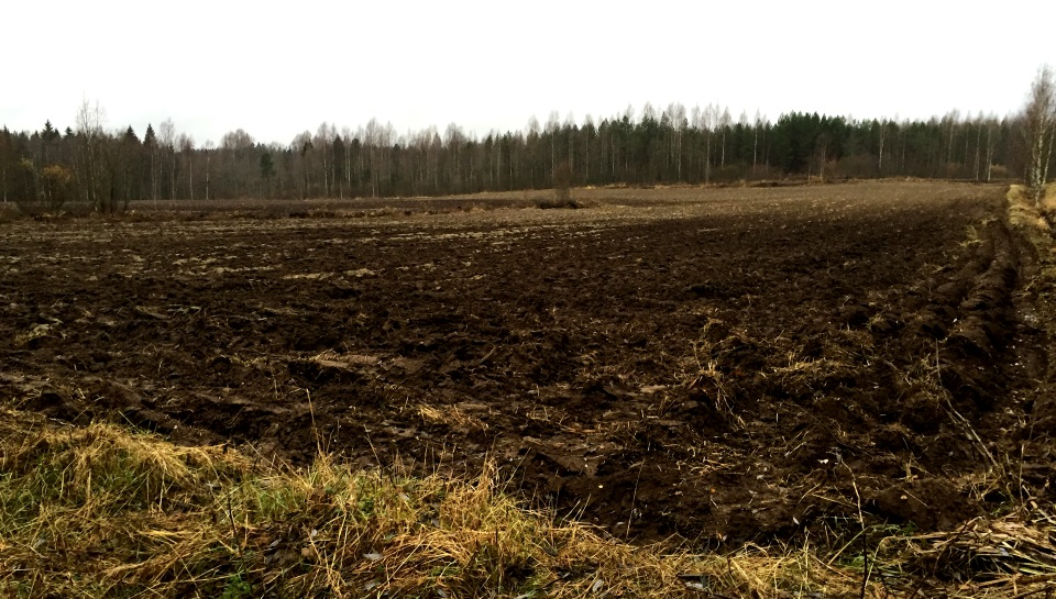 Kuva 3 - Talvireitin pellot eivät välttämättä ole syksyllä / keväälläkään mukavimpia kulkea. Kesällä pelloille ei ole mitään asiaa muutenkaan. Kuvan pelto ei muuten liity tapaukseen :)