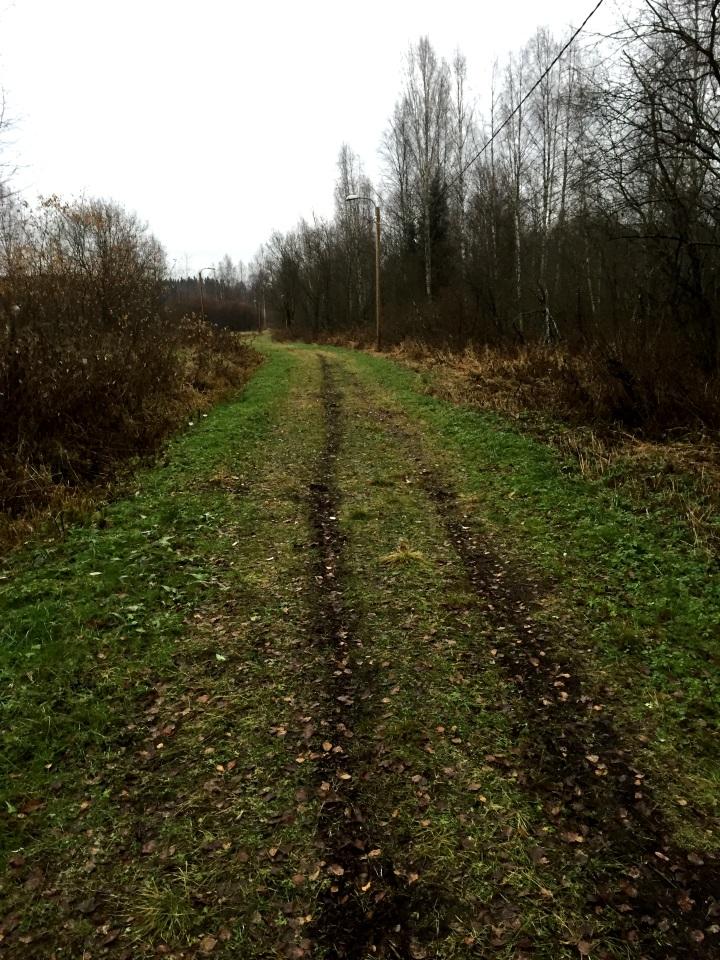 Kuva 5 - Päosin reitti oli leveää latupohjaa, jota oli pienestä mutaisuudesta huolimatta kiva kulkea.