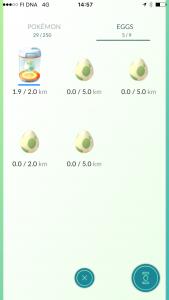 Viisi munaa, josta yhtä on haudottu 1.9 km matka.